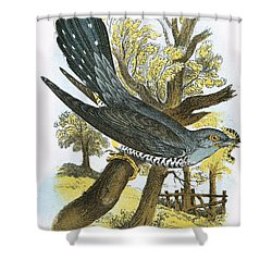 Cuckoo Shower Curtain by English School