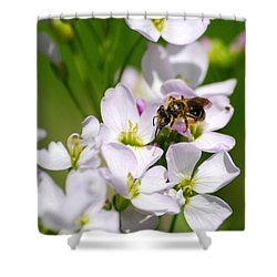 Cuckoo Flowers Shower Curtain by Christina Rollo