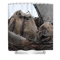 Cuddling Up Shower Curtain