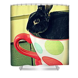 Cup O' Rabbit Shower Curtain by Valerie Reeves