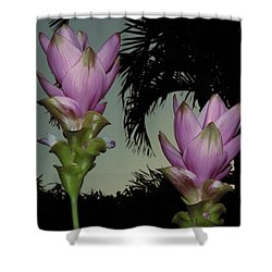 Curcuma Hybrid Flowers Shower Curtain