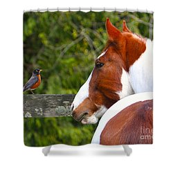 Curiosity Shower Curtain by Michelle Twohig