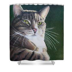 Royalty Shower Curtain by Pamela Clements