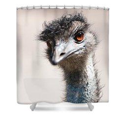 Curious Emu Shower Curtain