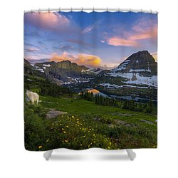 Curious Goat Shower Curtain