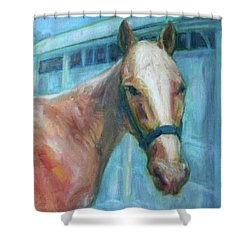Custom Pet Portrait Painting - Original Artwork -  Horse - Dog - Cat - Bird Shower Curtain