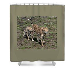 Cute Cheetah Wait For Me Mommy Shower Curtain by Tom Wurl