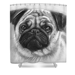 Cute Pug Shower Curtain by Olga Shvartsur