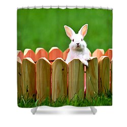 Cute White Rabbit  Shower Curtain by Lanjee Chee