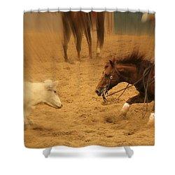 Cutting Horse 8 Shower Curtain