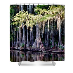 Cypress Bank Shower Curtain