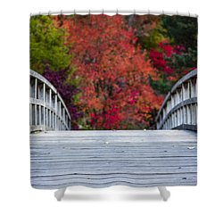 Shower Curtain featuring the photograph Cypress Bridge by Sebastian Musial