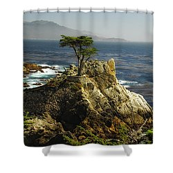 Cypress Shower Curtain