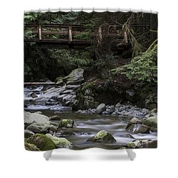 Cypress Falls Shower Curtain
