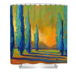 Cypress Road 5 Shower Curtain