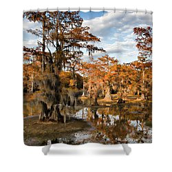 Cypress Rust Shower Curtain by Lana Trussell