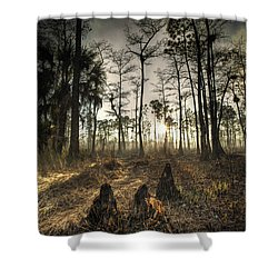 Cypress Stumps And Sunset Fire Shower Curtain