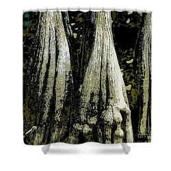Cypress Three Shower Curtain by Sally Simon
