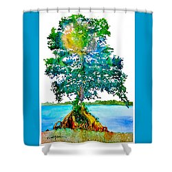 Da107 Cypress Tree Daniel Adams Shower Curtain