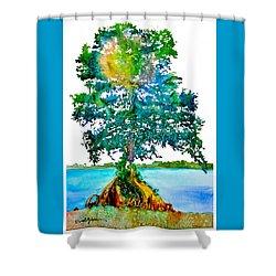 Da107 Cypress Tree Daniel Adams Shower Curtain