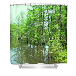 Bright Green Cypress Trees Reflection Shower Curtain by Belinda Lee