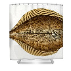 Dab Shower Curtain by Andreas Ludwig Kruger