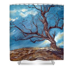 Daddy's Tree Shower Curtain by Meaghan Troup