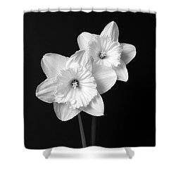 Daffodil Flowers Black And White Shower Curtain