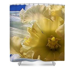 Daffodil In The Sun Shower Curtain by Bruce Bley