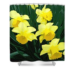Daffodil Song Shower Curtain