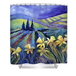 Daffodils And Stormclouds Shower Curtain