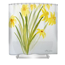 Daffodils For Mothers Day Shower Curtain by Wade Binford