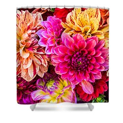 Dahlia Bouquet Number 3 Shower Curtain