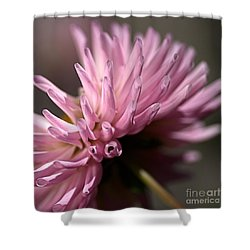 Shower Curtain featuring the photograph Dahlia by Joy Watson
