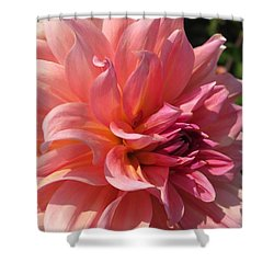 Shower Curtain featuring the photograph Dahlia Named Fire Magic by J McCombie