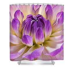 Dahlia Shower Curtain
