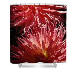 Dahlia Vi Shower Curtain