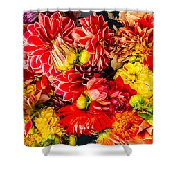 Dahlias Summer Color Shower Curtain