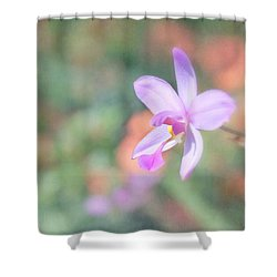 Dainty Orchid Shower Curtain by Kim Hojnacki