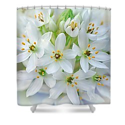 Dainty Spring Blossoms Shower Curtain by Kaye Menner