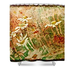 Shower Curtain featuring the painting Daisies In The Wind by Carolyn Rosenberger