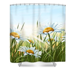 Daisies Shower Curtain by Veronica Minozzi