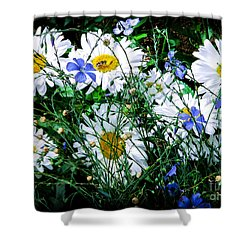Daisies With Blue Flax And Bee Shower Curtain