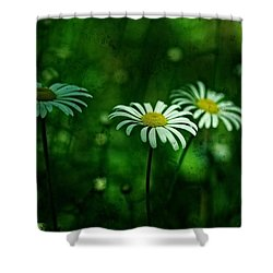 Daisy 2 Shower Curtain by Simone Ochrym