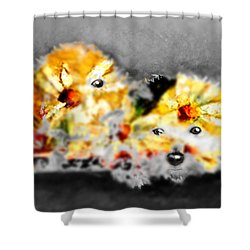 Daisy Animal Shower Curtain by Marcello Cicchini
