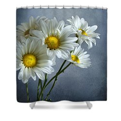 Shower Curtain featuring the photograph Daisy Bouquet by Ann Lauwers