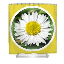 Daisy Closeup Shower Curtain by The Creative Minds Art and Photography