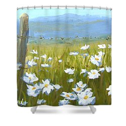 Daisy Dance Shower Curtain by Karen Ilari