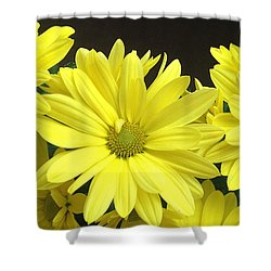 Daisy Family Shower Curtain