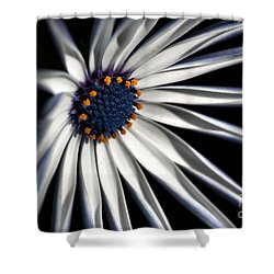 Shower Curtain featuring the photograph Daisy Heart by Joy Watson